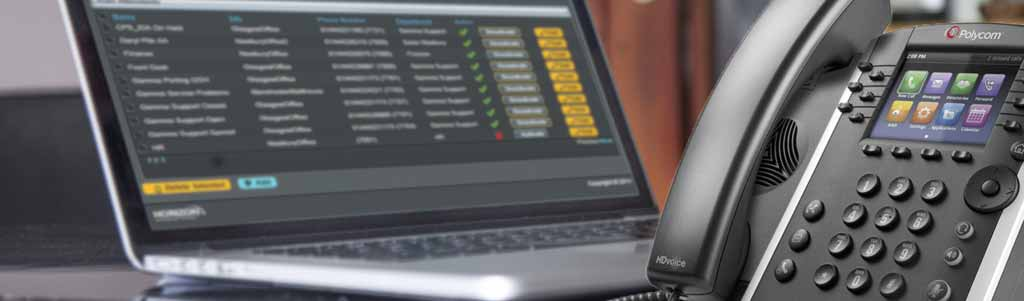 Gamma horizon hosted voip system